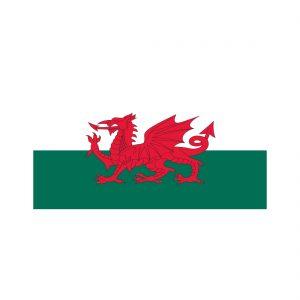 Welsh Cymru flag