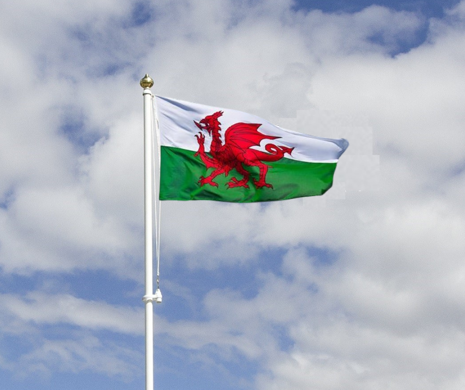 Welsh Flag and Garden flagpole